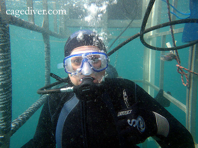 Shark Cage Diver